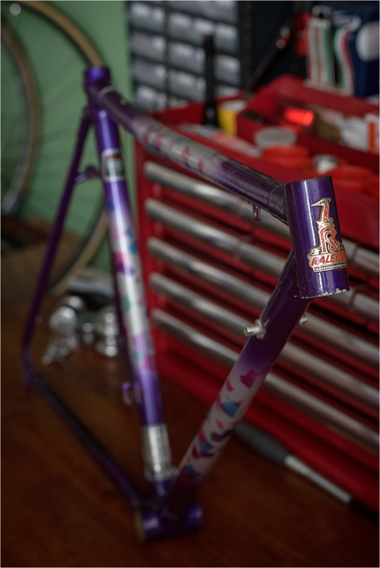 SB9529 Raleigh Special Products Division Dyna-Tech Low Profile Frame 2070 Tubing