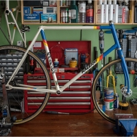 A Mysterious Motor Paced Stayer Frame - New Arrival